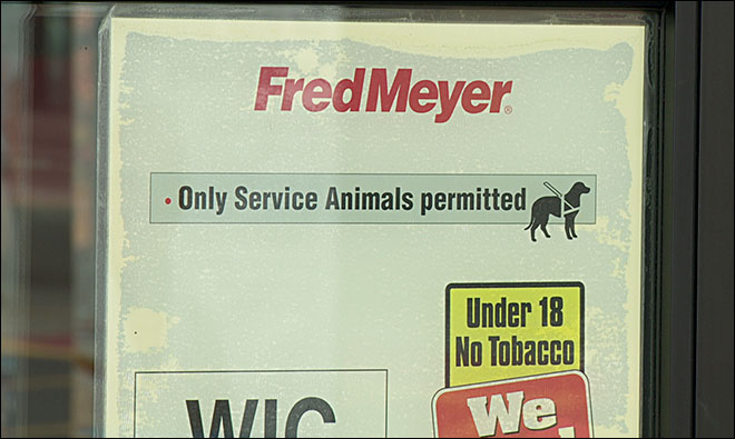 Fake service animals is 'very frustrating' issue, store says
