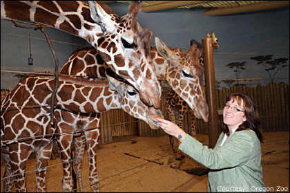 Director and lead veterinarian leave Oregon Zoo