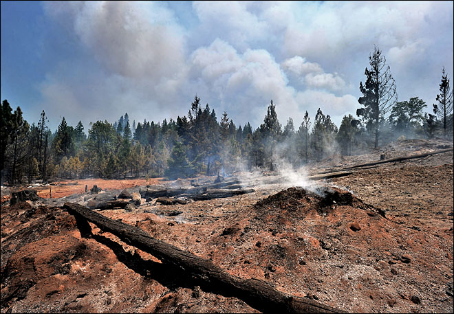 Oregon Gulch Fire grows to nearly 51 square miles