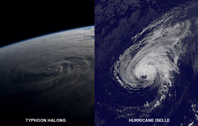 Why is it 'Hurricane' and not 'Typhoon' Iselle?
