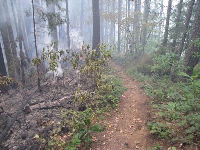 Forest fires close some mountain bike trails near Oakridge
