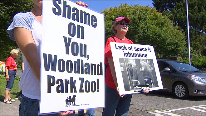 Concerned group holds vigil for elephant euthanized at Seattle zoo