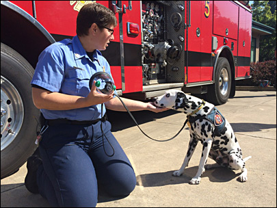 Eugene-Springfield Fire gets rescue air masks for pets