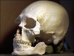DNA from Kennewick Man bones tied to Native Americans