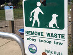 Scoop on poop: Bag ban puts dog owners in a ruff spot