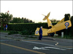 Pilot survives small plane crash
