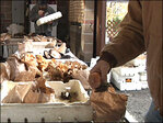 Fun with fungus starts Sunday: 'I love the Mushroom Festival'