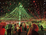 Australian family sets world record for Christmas lights