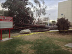 Tree falls on student at California college