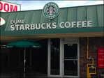 'Dumb Starbucks' in Los Angeles tied to comedy duo