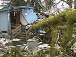 Man trapped when tree falls on house: 'It sounded like a freight train'