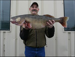 No fish tale: Fisherman sets Wash. state record with 20lb Walleye