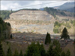 Seeking answers, Oso woman files damages claims in 530 mudslide
