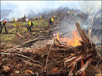 Recruits get hands-on training for 2014 wildfire season