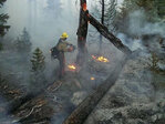Lightning ignites new fires in Umpqua forest, Crater Lake park