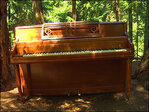 Mystery piano strikes a chord with hikers