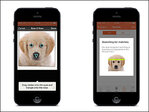 Picture it: Using facial recognition technology to find lost dogs