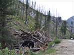 Avalanche in August? Remnants of massive slide still visible