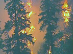 36 Pit fire grows to 2,300 acres near Mt. Hood, people evacuated