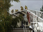 Albany family and their three pets safe after house fire