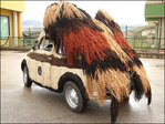 Stylist's Fiat named 'World's Hairiest Car'