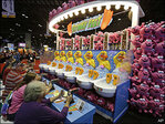 Amusement parks challenged by high-tech home entertainment