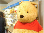 Polish town opposes Pooh Bear for unclear gender