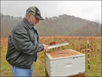 Beekeepers eye Appalachian surface mines for hives