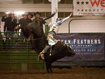 Roseburg bull riding promotion continues to grow