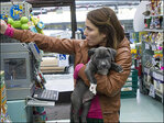 Pawscars honor top animal actors, including prolific primate