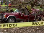 Tree falls on woman during windstorm, fracturing her neck
