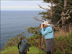 Cape Lookout hike on Oregon coast ideal for whale watching