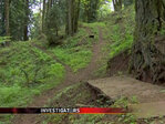 Mountain bike obstacle course set up on cemetery property