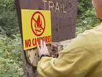 'Everything in the forest is tinder dry': New campfire restrictions in effect