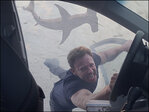 'Sharknado 3' has the sharks, but not ratings of last year