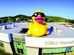 Giant inflatable duck taken from roof of Roseburg auto center