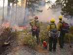 Collier Butte Fire: 'This fire is likely to endure for an extended period'