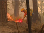 Wanted: People to fight fires in Washington and Oregon