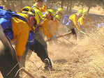125 Oregon National Guard troops to fight fires; 250 more in training