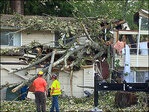 Falling tree narrowly misses family: 'It would have been all of us'