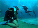 Dancers become divers for full underwater performance