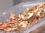 Crab season closes, bringing Oregon millions of dollars