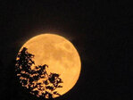 Photos: Supermoon sets lunar show, illuminating world's skies