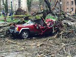 Tree falls on Jeep near PSU campus, trapping woman inside