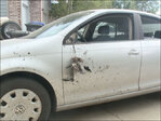 Elk puts hole in family's car