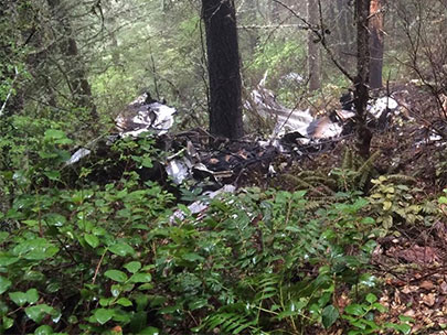 Body found in wreckage of small plane in Linn County
