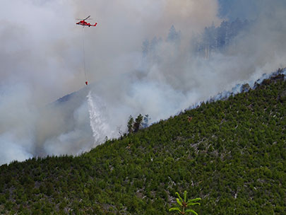 Wildfire in Douglas County: 'We're pummeling it with water'