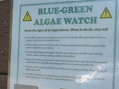 Army Corps halts testing for toxic algae in reservoirs