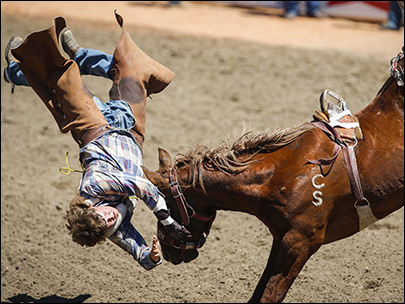 Photos: Rodeo riders hold on for dear life