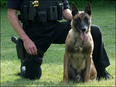 Vancouver police K9 dies after being stabbed by fleeing suspect